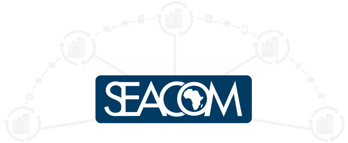 SEACOM Business Fibre Provider in Gauteng